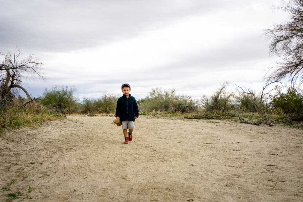 A small boy hiking in Palm Desert