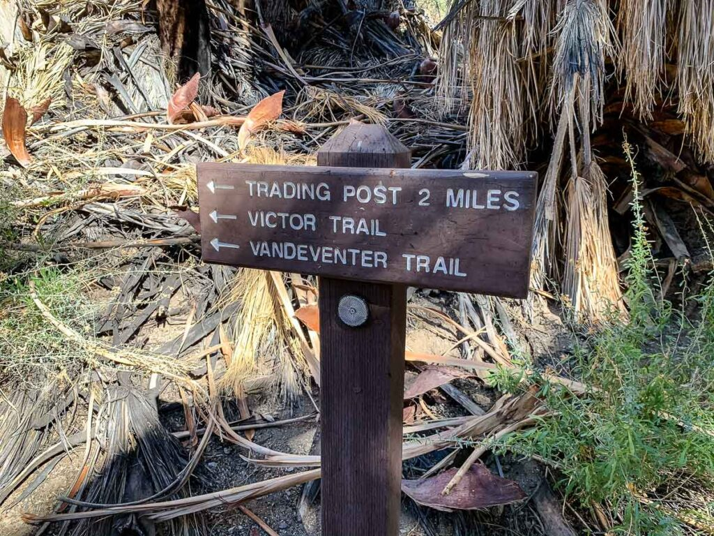 easy palm springs hiking trails
