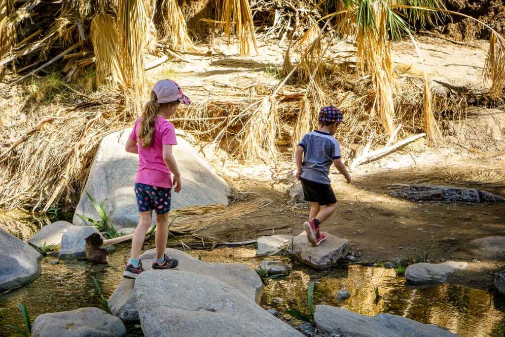 The Palm Canyon hike is a fun Palm Springs activity for kids