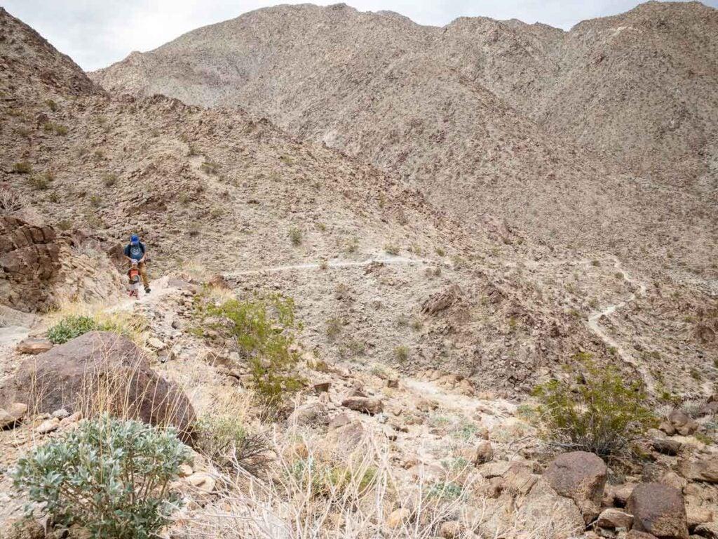 A family enjoys hiking near Palm Desert