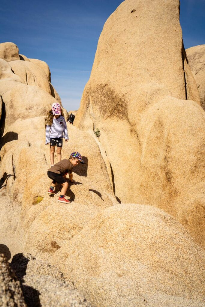 fun activities in Joshua Tree National Park for kids - Arch Rock
