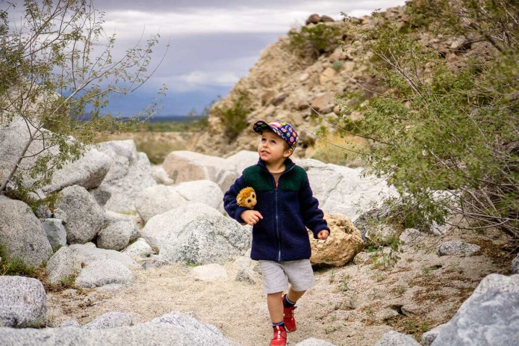 A small boy carries a lion stuffy while on the Living Desert hiking trails