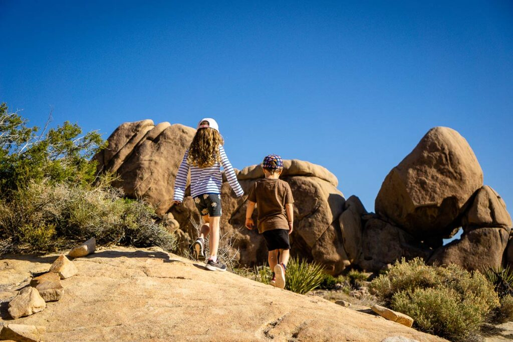 We recommend hiking the Split Rock Trail when you visit Joshua Tree with kids