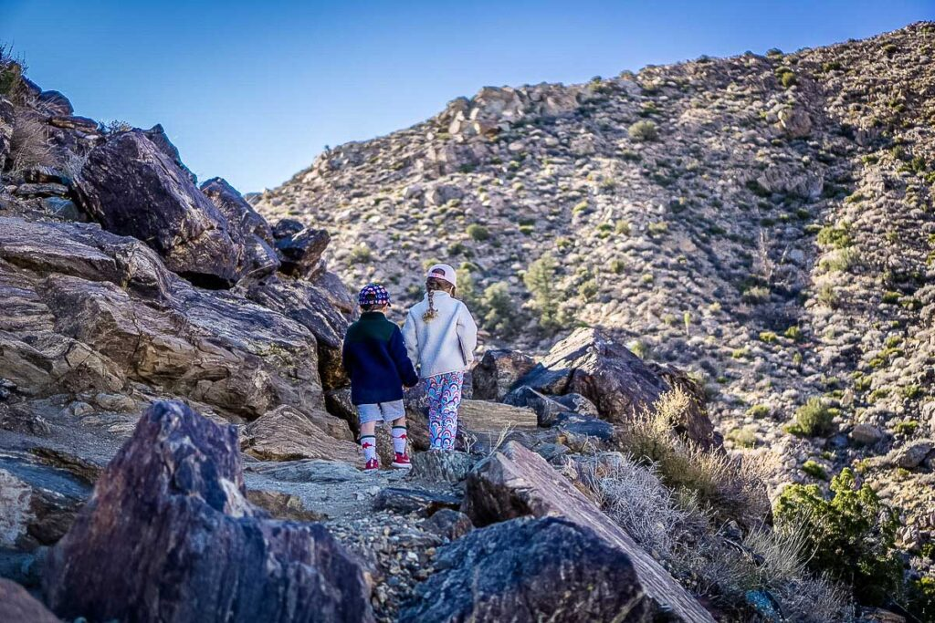 kids will enjoy the rocky trail along the Ryan Mountain hike in Joshua Tree, CA
