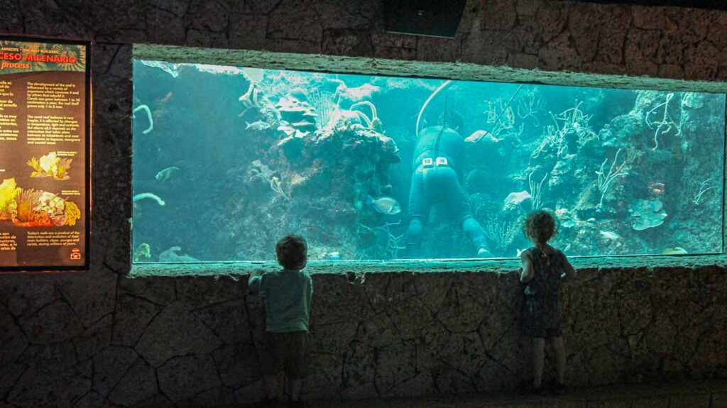 Two kids watch a scuba diver in a tank at the Xcaret Aquarium