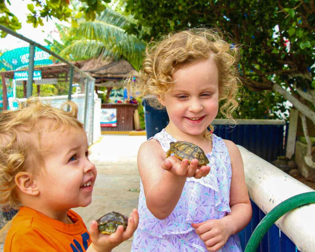 Smiling kids holding baby turtles at the Isla Mujeres turtle farm