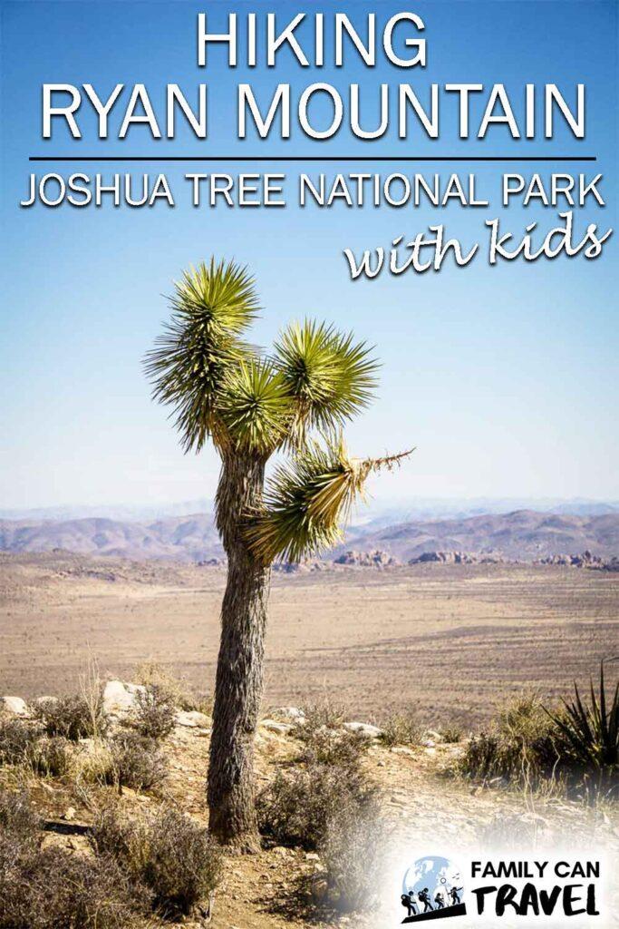 Hiking Ryan Mountain in Joshua Tree National Park with kids