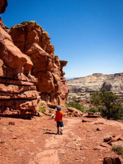 Capitol Reef National Park with Kids Story Image