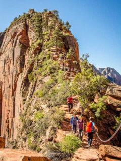 Hiking Angels Landing Web Story Cover