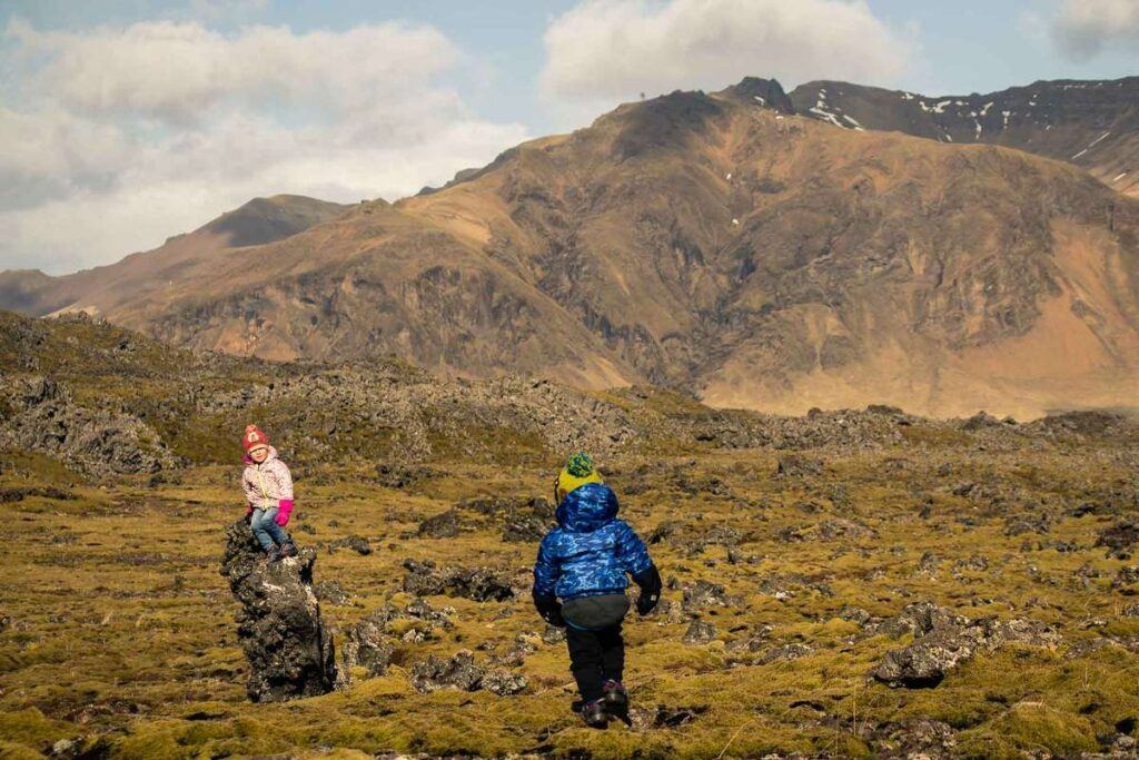 things to do on the Snaefellsnes Peninsula with kids - Berserkjahraun Lava Fields