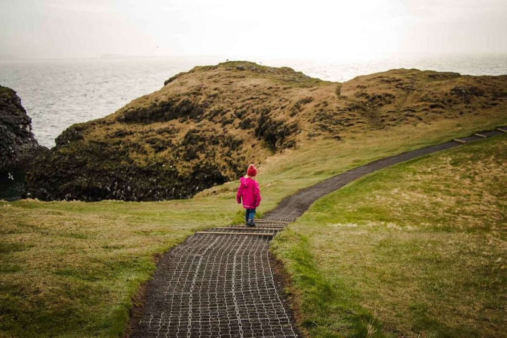 kid-friendly hikes in Iceland - Arnarstapi to Hellnar coastal walk - Snaefellsnes Peninsula