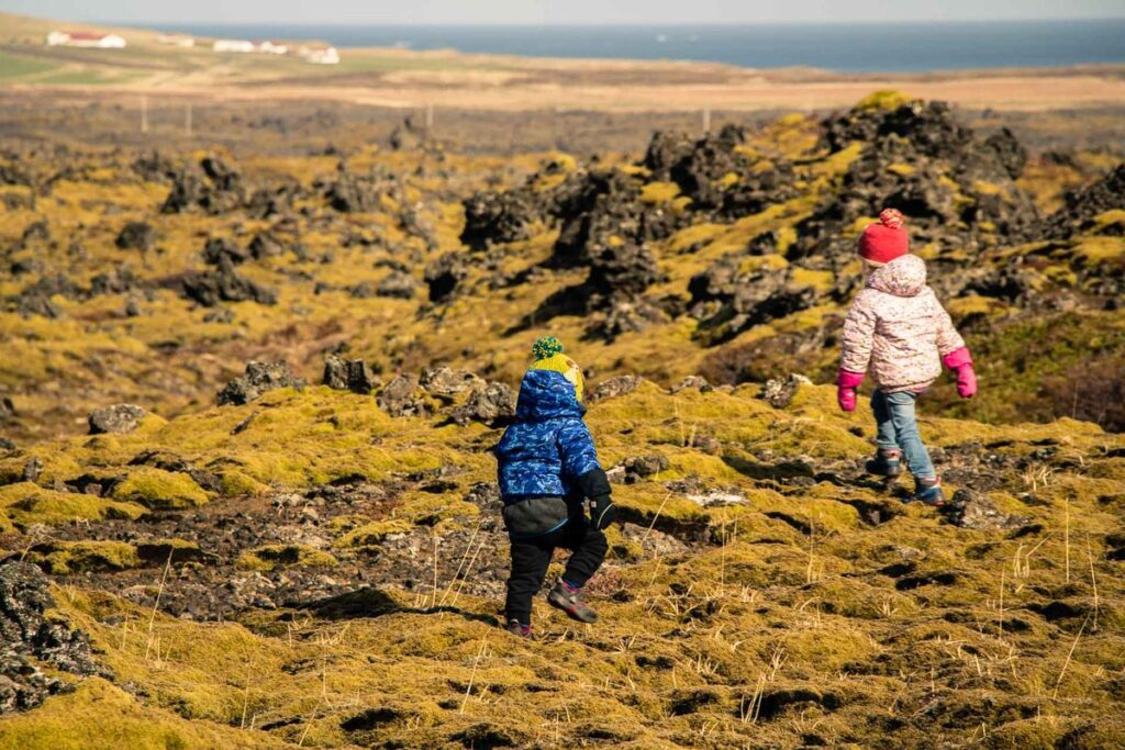 Things to do in Snaefellsnes Peninsula with Kids - Berserkjahraun Lava Fields in Iceland
