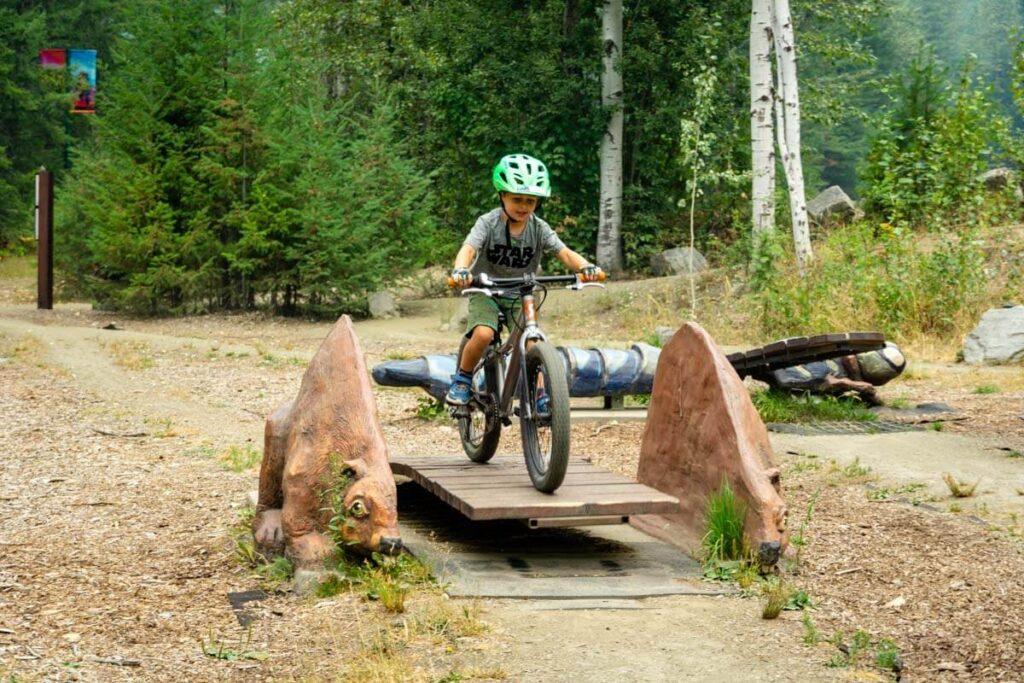 easy mountain biking in revelstoke for kids - mount revelstoke national park bike park