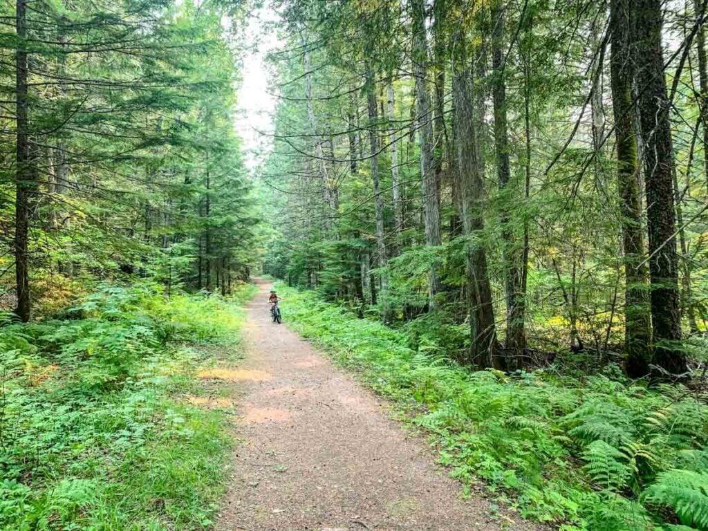 Easy Mount Revelstoke mountain biking trail - 23 Connector