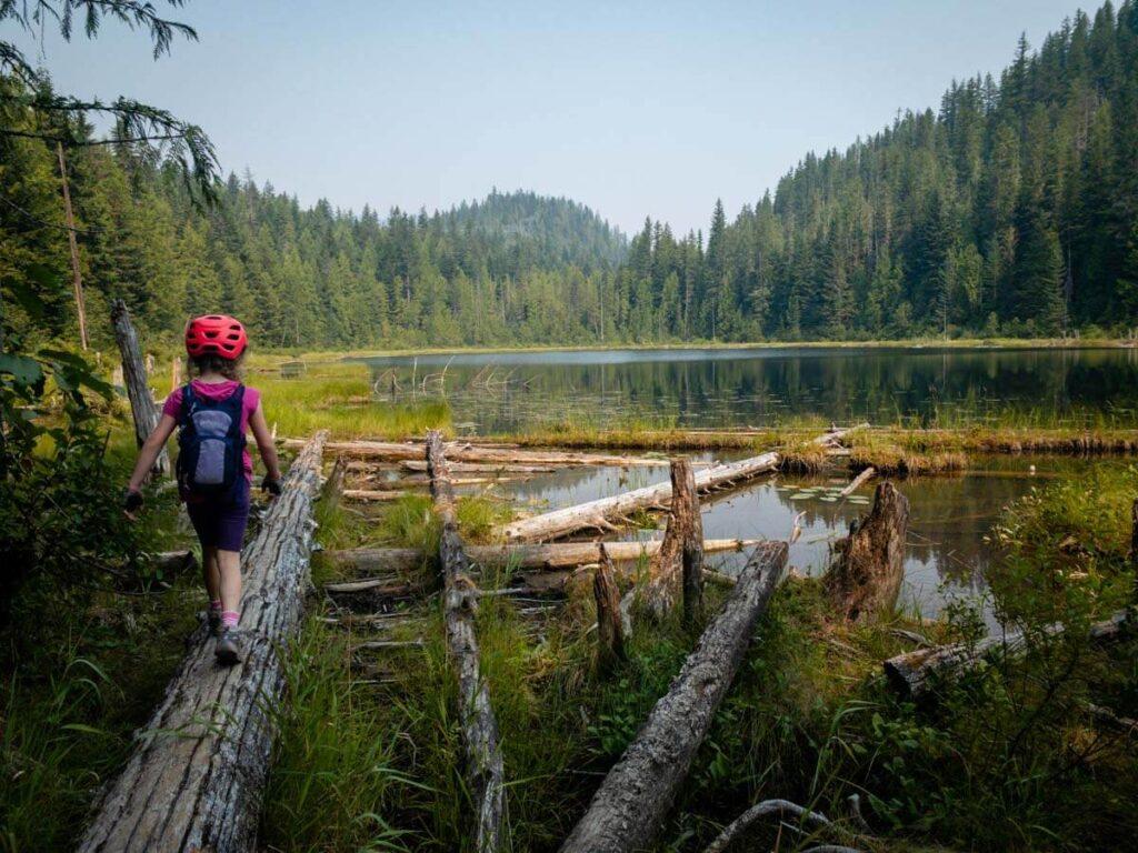 mountain biking in revelstoke with kids can lead to fun adventures