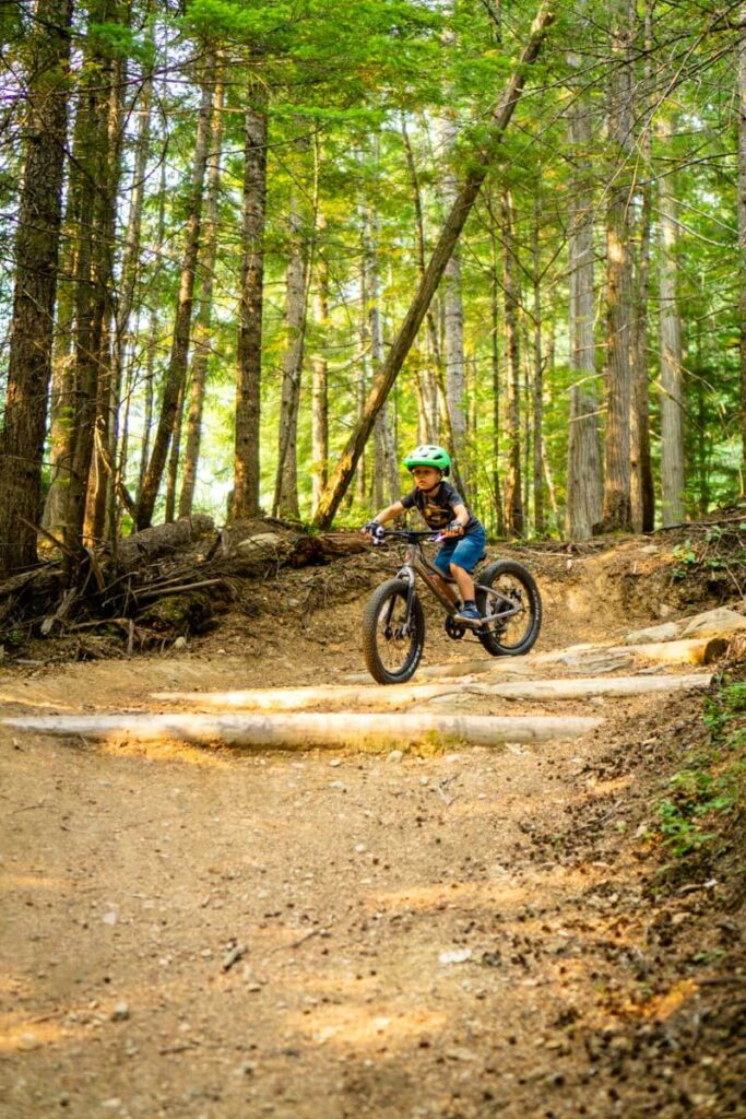 easy bc mountain biking in Revelstoke