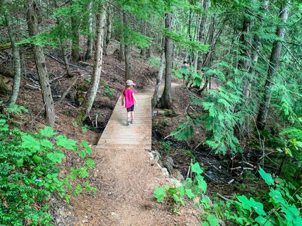 easy hikes in Revelstoke for kids - The Bottoms Up Trail at the Revelstoke Mountain Resort
