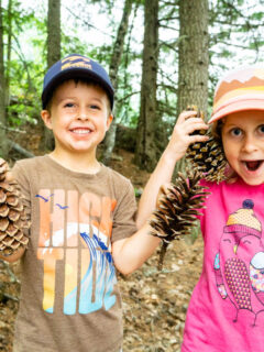 kid-friendly Revelstoke Mountain Resort hikes - Bottoms Up Trail