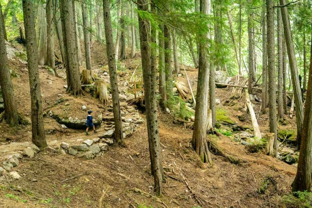 easy mount revelstoke national park hikes - Broken Bridge Trail along the Meadows in the Sky Parkway