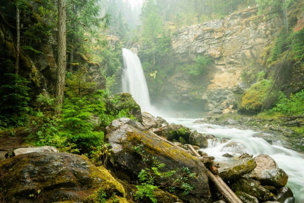 Sutherland Falls is one of the three easy waterfall hikes near Revelstoke, bc