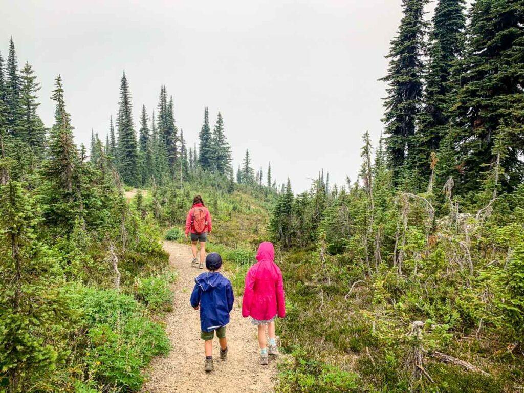 best easy hikes in revelstoke national park - koo koo sint