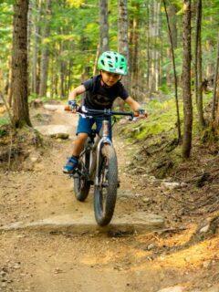 easy mountain biking revelstoke for kids at mount macpherson