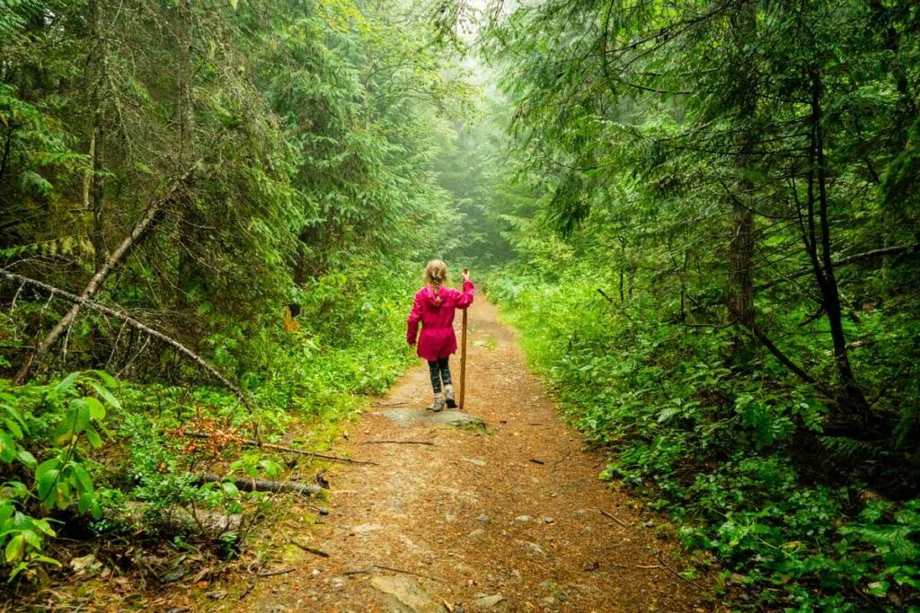 Begbie Falls was one of our favorite easy revelstoke hiking trails to waterfalls