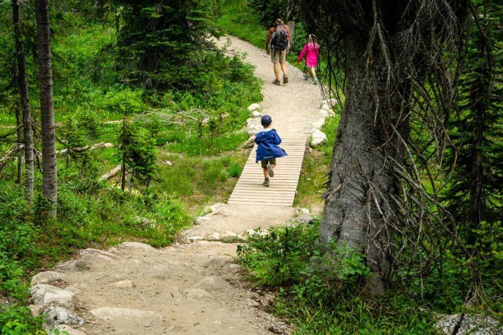 Mount Revelstoke National park summit hiking trails - Upper Summit Trail