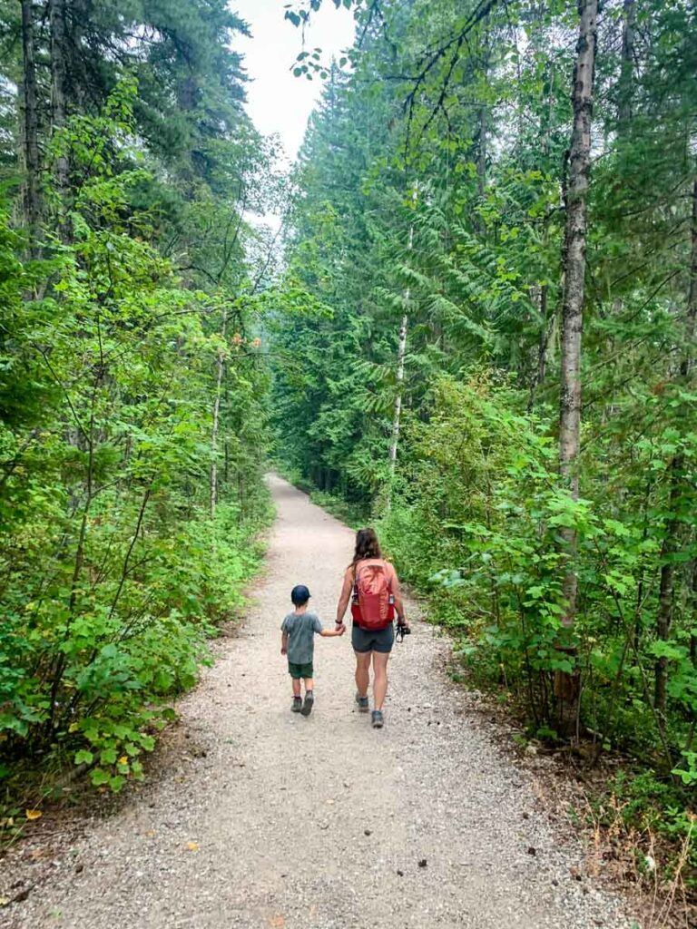 Nels Knickers is one of the best easy hikes near revelstoke, bc